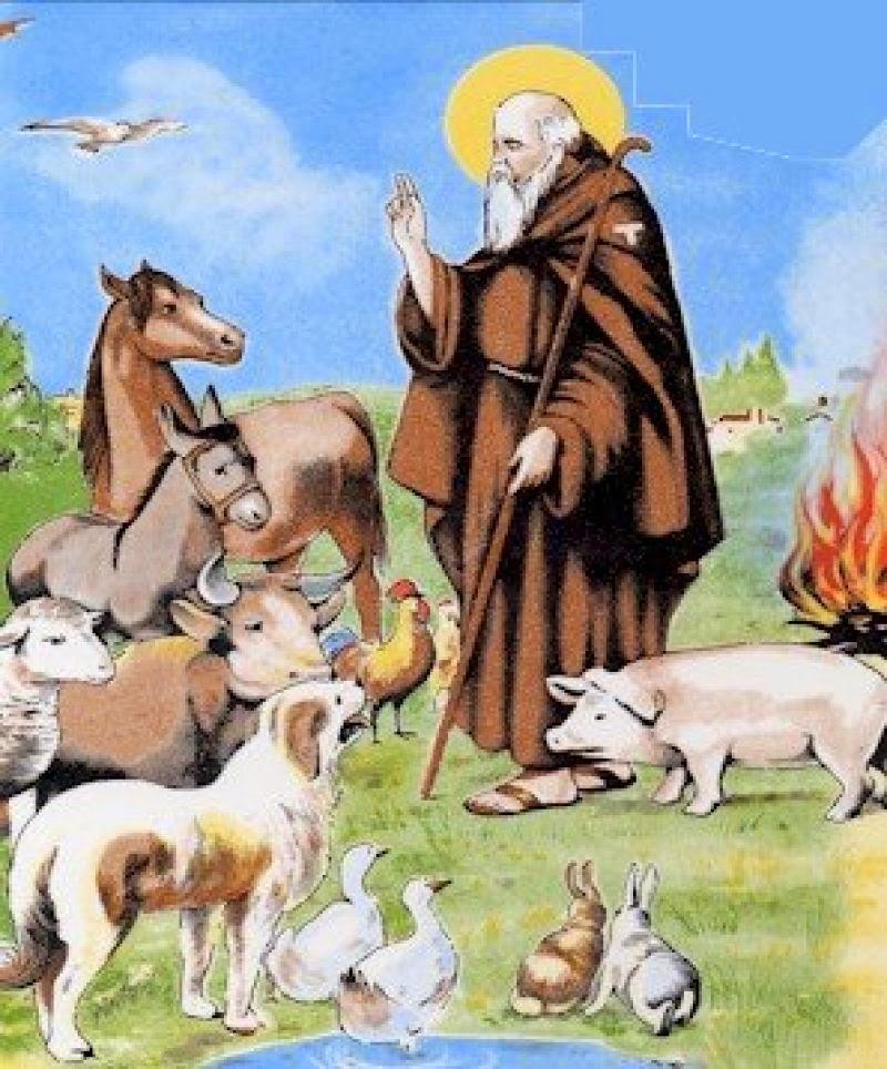 17 de enero día de San Anton, dia del protector animal