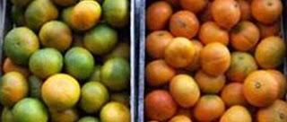 Mermelada de mandarinas y magdalenas de mandarina