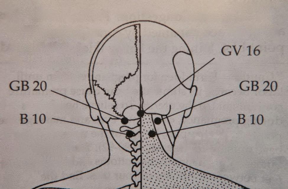 写真:首の後ろのツボ