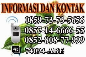Informasi Serta Pemesanan