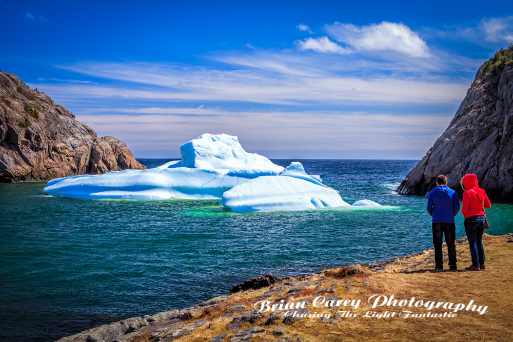 Quidi Vidi Iceberg