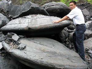 UFO Stone