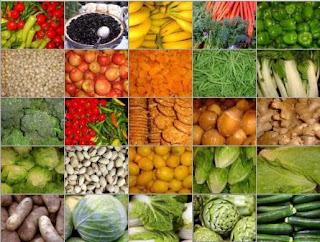 Jenis Tanaman Hortikultura