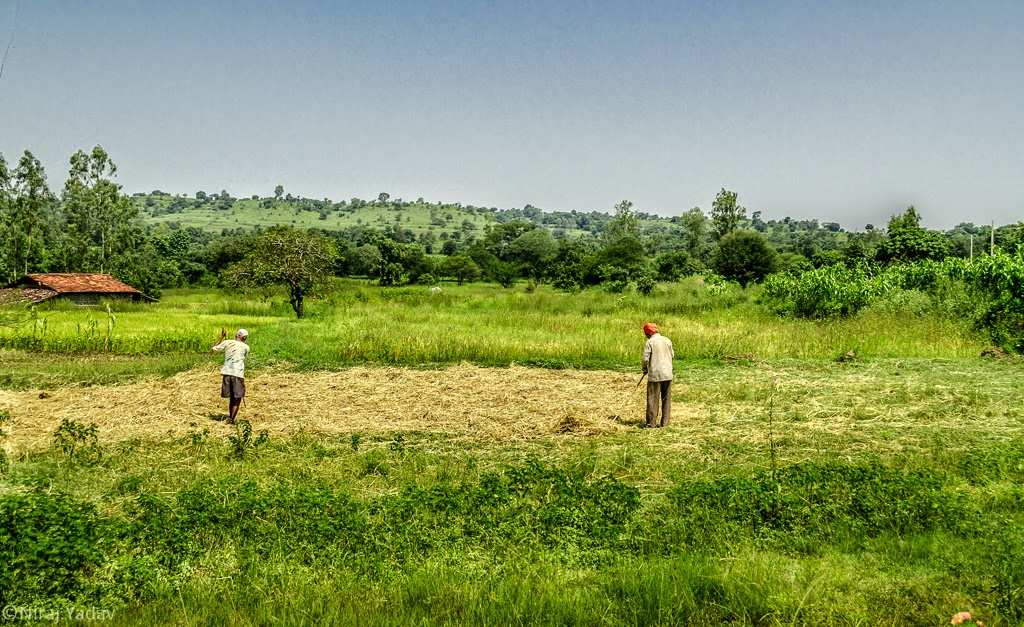 kolhapur, farms in kolhapur