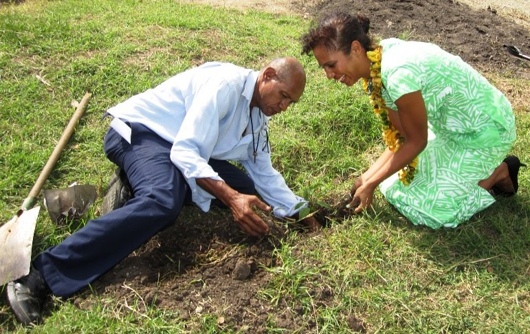 Png Rachel Sapery James Plant A Mangrove Seedling The National