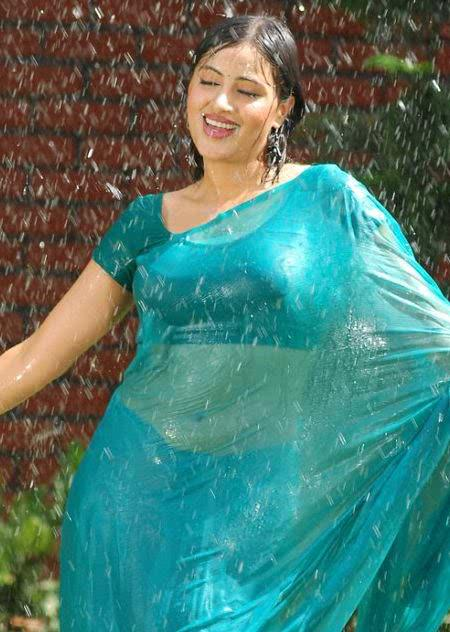 Indian Aunties Very Hot In Transparent Saree