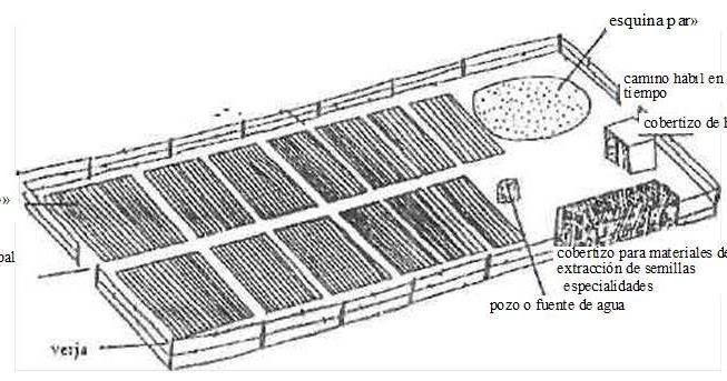 Construccion de viveros ubicaci n del vivero for Construccion de viveros forestales