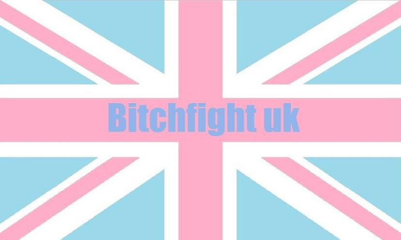 bitch fight blog