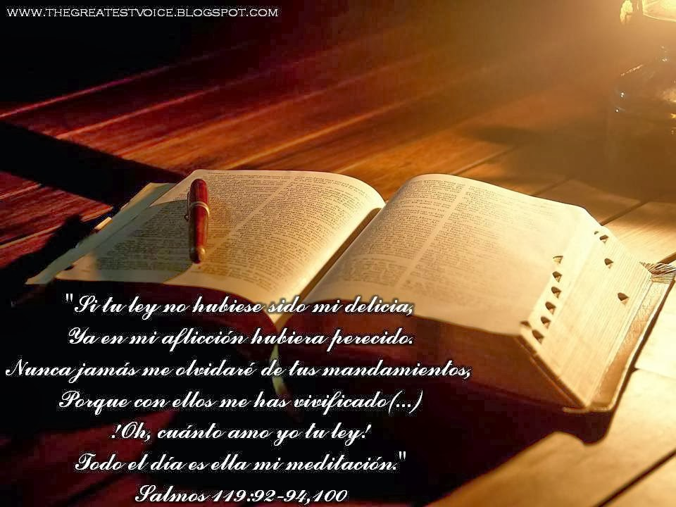 leer la biblia en la: