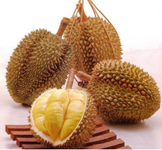 Mamfaat Durian untuk Kecantikan Kulit