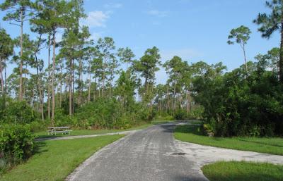 Lone Pine Key campingpladsen i Everglades National Park i Florida