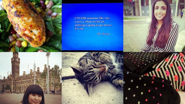 quorn, the lorax, cat, socks