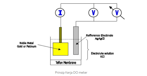 prinsip kerja do dissolved oxygen  meter