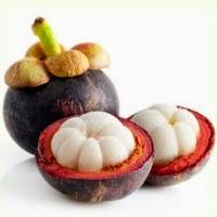 manfaat kulit manggis untuk payudara