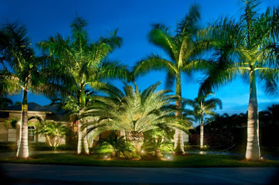 solar led landscape lighting