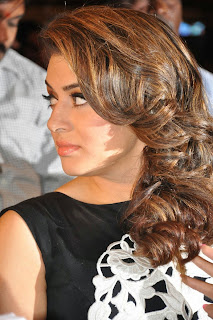 Hansika Motwani Latest Pictures in Black Jumpsuit at Maga Maharaju Audio Launch ~ Celebs Next