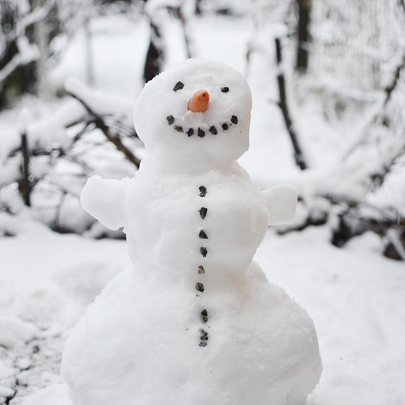 Kuvahaun tulos haulle lumiukko