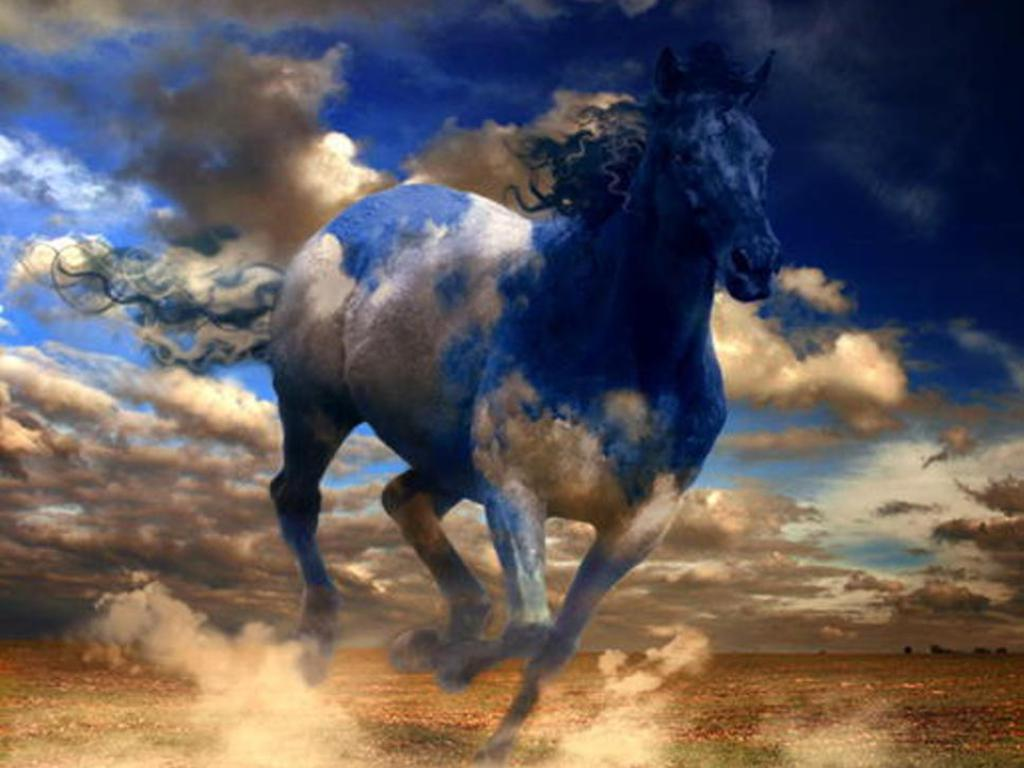 Most Inspiring   Wallpaper Horse Desert - blue  Snapshot_806913.jpg