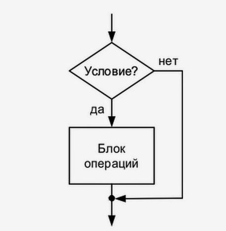 блок выбора (проверка