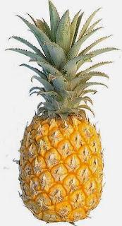 manfaat dan khasiat buah nanas untuk diet dan mencegah kanker