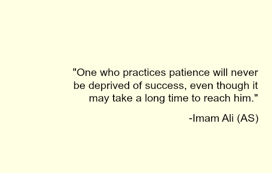 One who practices patience will never be deprived of success, even though it may take along time to reach him. -Imam Ali (a.s)