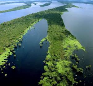 Rios da Amazônia