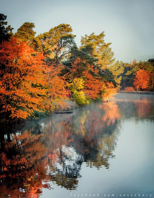 Rytel, autumn, Wielki Kanał Brdy