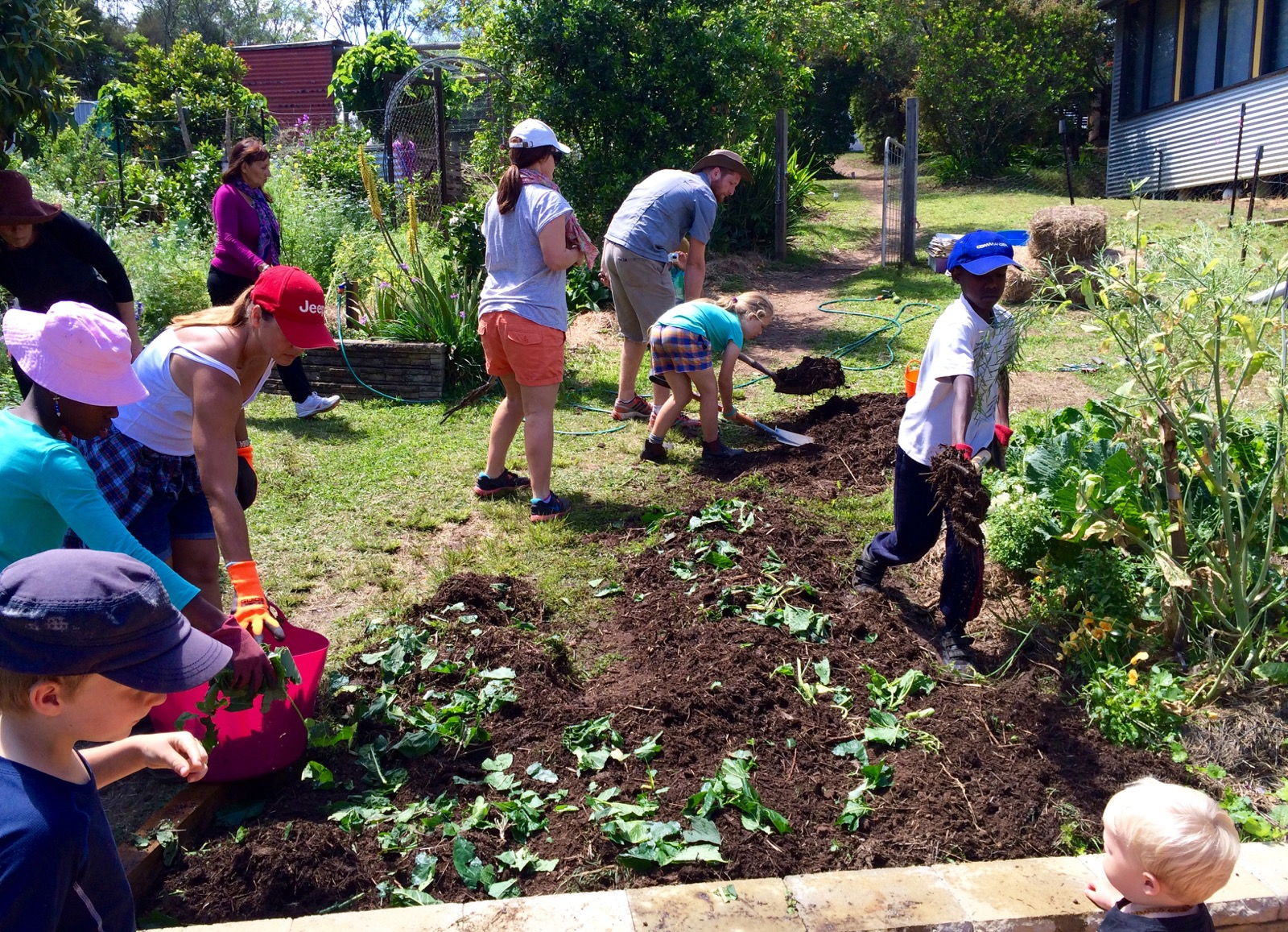 Our permaculture life the 2 best things you can do to for Soil our life
