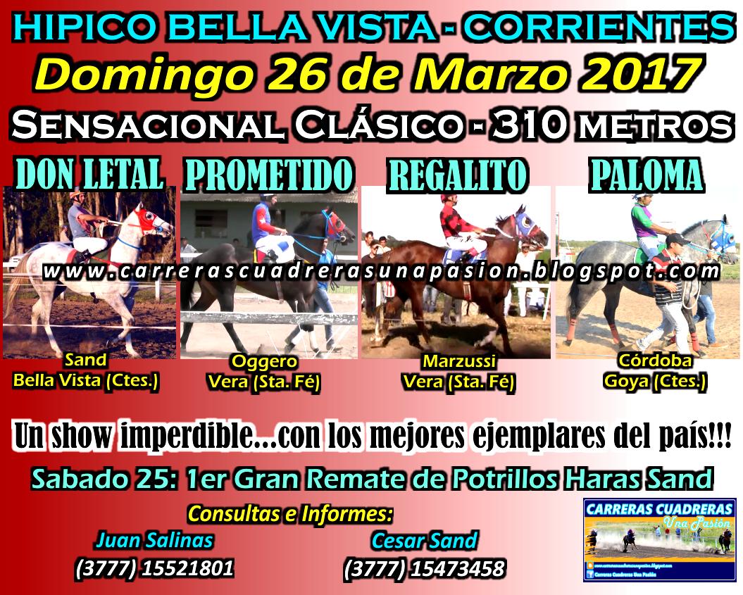BELLA VISTA - CLASICO 310