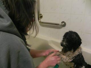 Aswell's bath