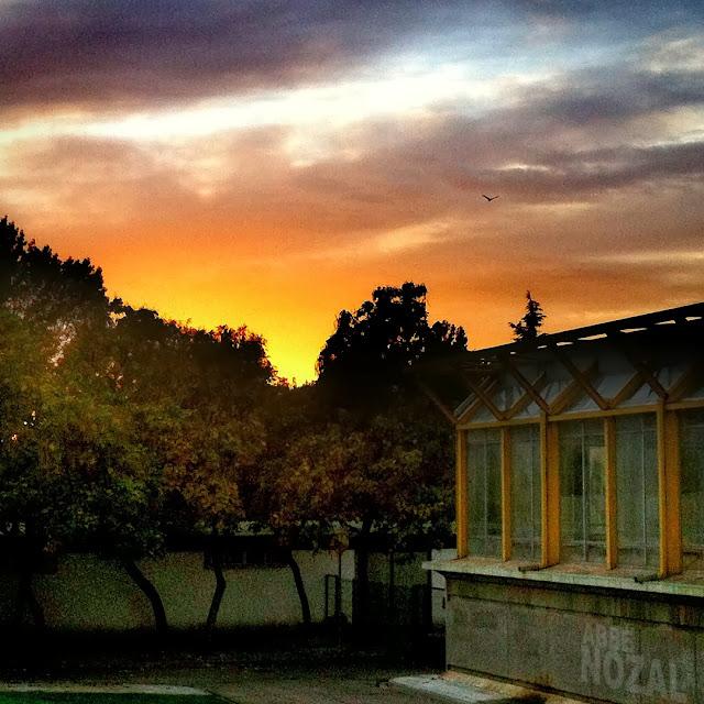 Crepúsculo pinturero, 2013 Abbé Nozal