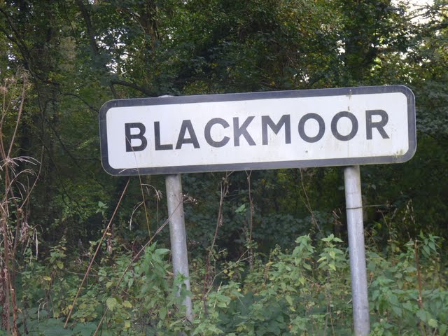 Blackmoor Apple Tasting Day