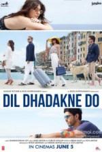 Dil Dhadakne Do 2015 BluRay 1080p