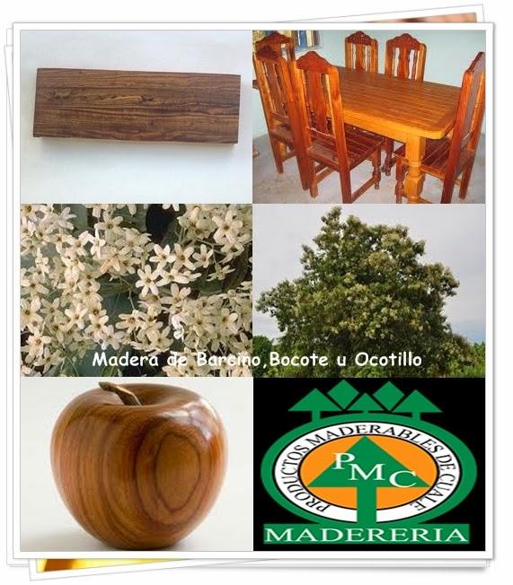 maderas-exoticas-barcino-bocote-ocotillo-maderables-cuale-vallarta