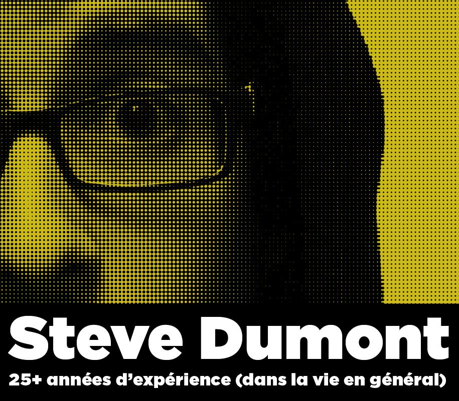Steve Dumont - 25+ années d'expérience (dans la vie en général)