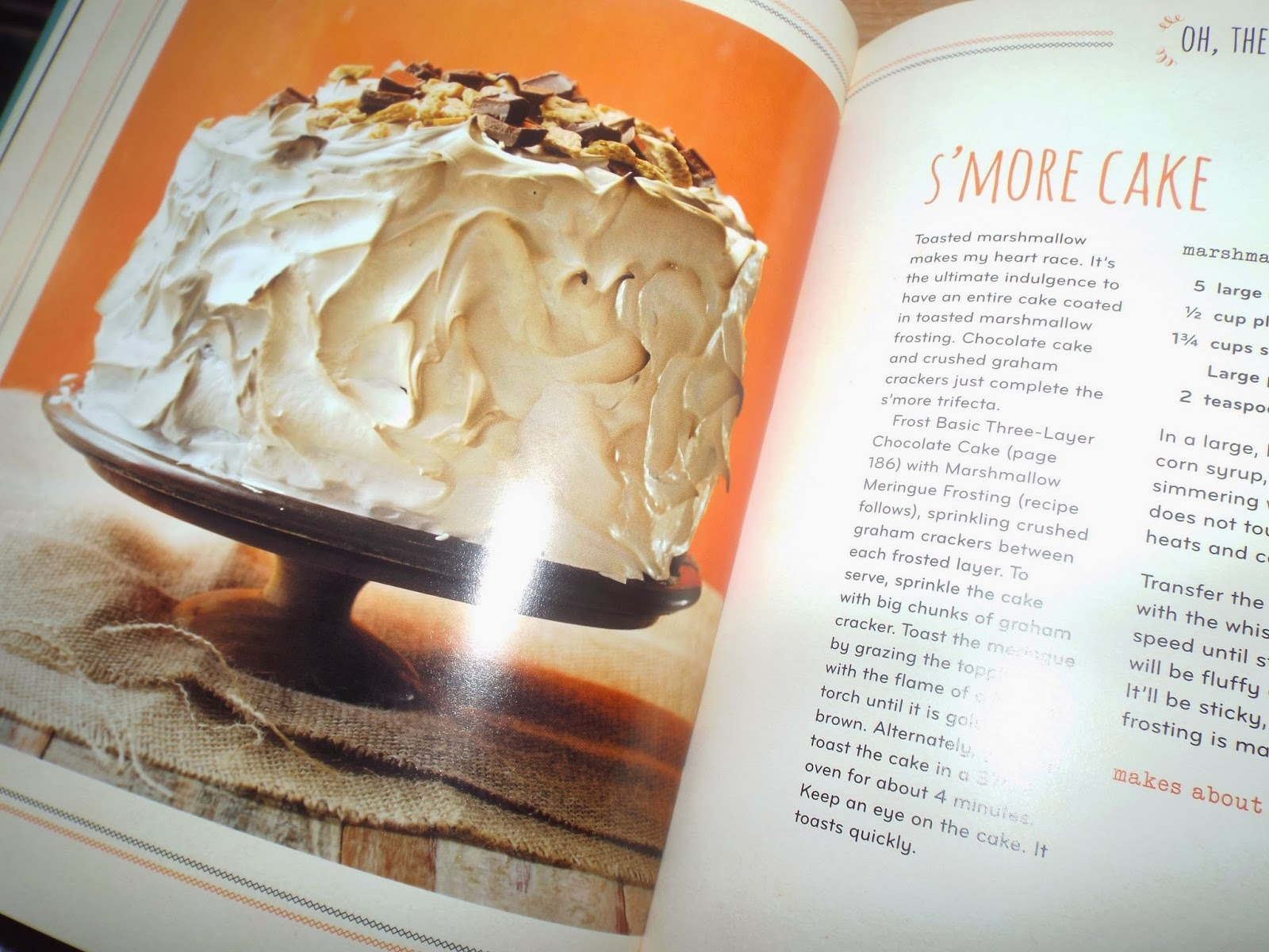 'Smore Cake: Homemade Decadence