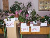 Конкурс кімнатних рослин
