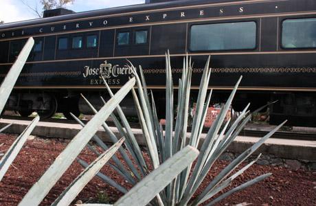 José Cuervo Express, Tequila, Guadalajara, Jalisco