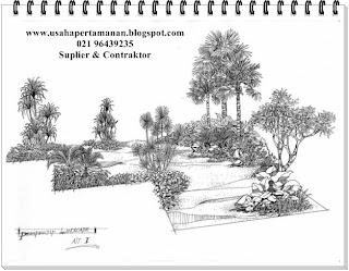 tukang taman- taman dan kolam minimalis - suplier tanaman