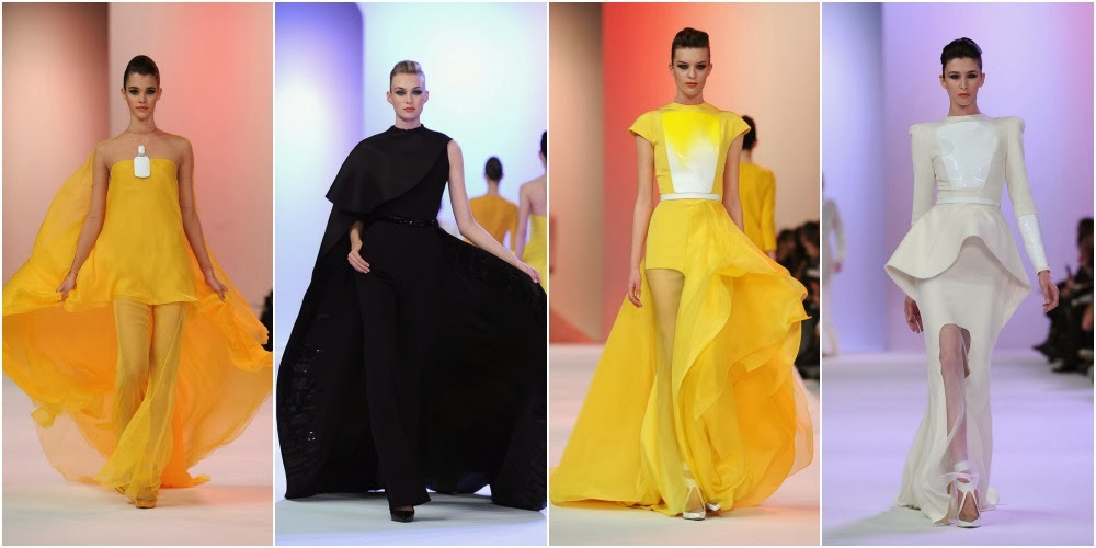 Desfile de Stephane Rolland