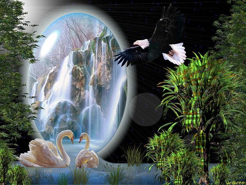 Cachoeira da Oxum !