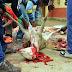 Enterrarán en Qunu a Nelson Mandela