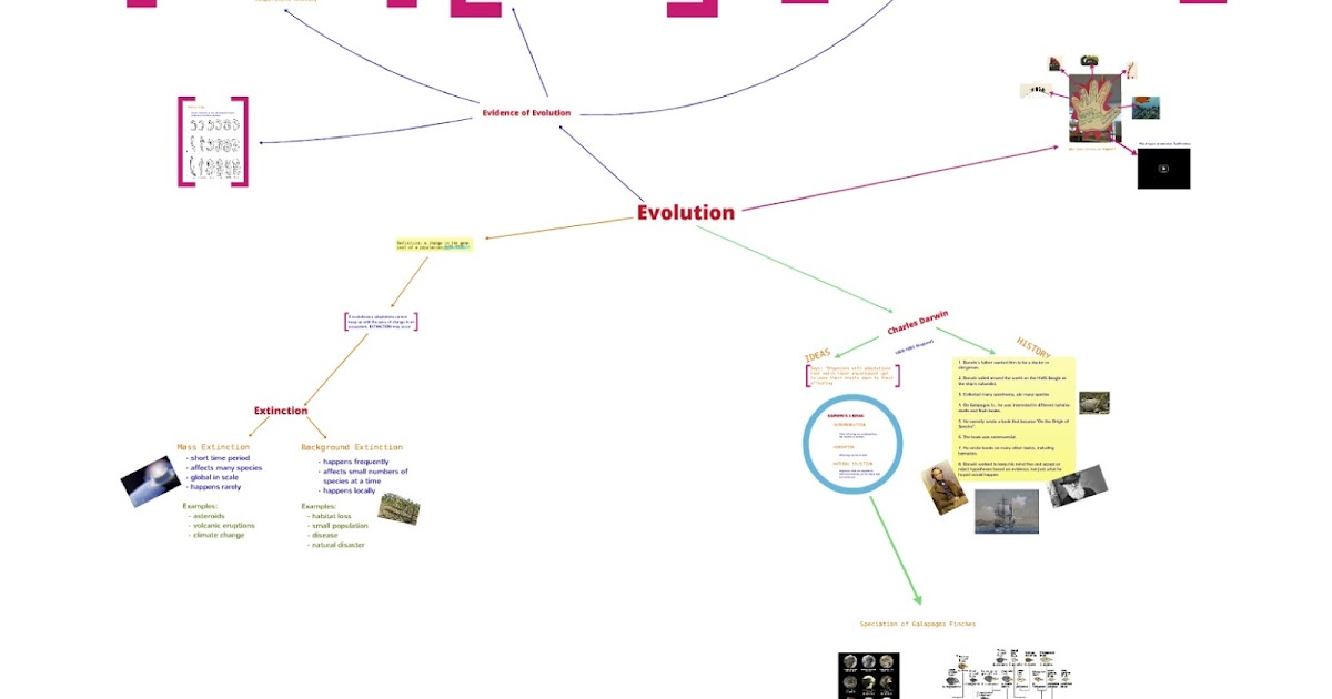 How Does Evolution Relate To Natural Selection