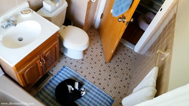 organization, blue and white, home decor, bathroom, decor, bathroom tour