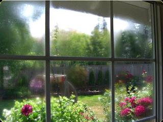 replacement vinyl windows seattle wa
