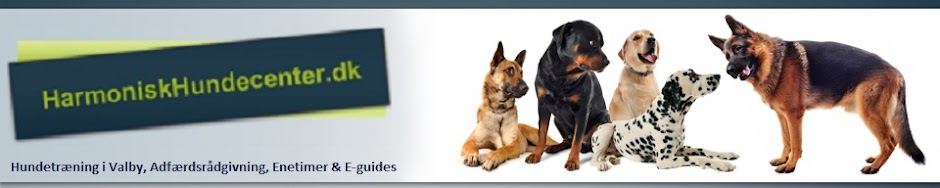 Harmonisk Hundecenter