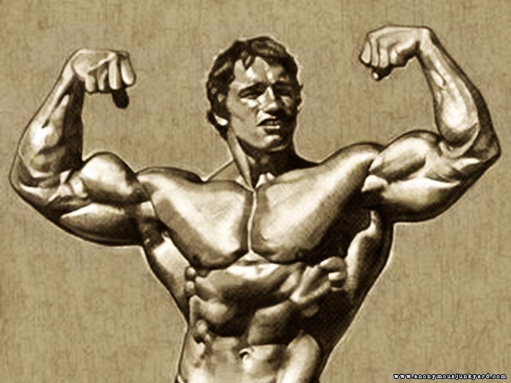 http://4.bp.blogspot.com/-w6BNX7VhAmw/Tx8Ez2gx5FI/AAAAAAAACjU/HVCd6qpPgVE/s1600/Arnold%20Schwarzenegger%20Bodybuilding%20Wallpaper-8.jpg