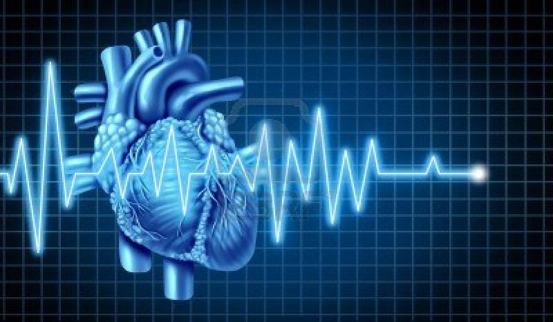 تحميل الدكتور مجدي صبري الفسيولوجي 11840293-ekg-grafico-con-el-electrocardiograma-de-un-corazon-humano-que-representa-el-latido-del-corazon-y-el.jpg
