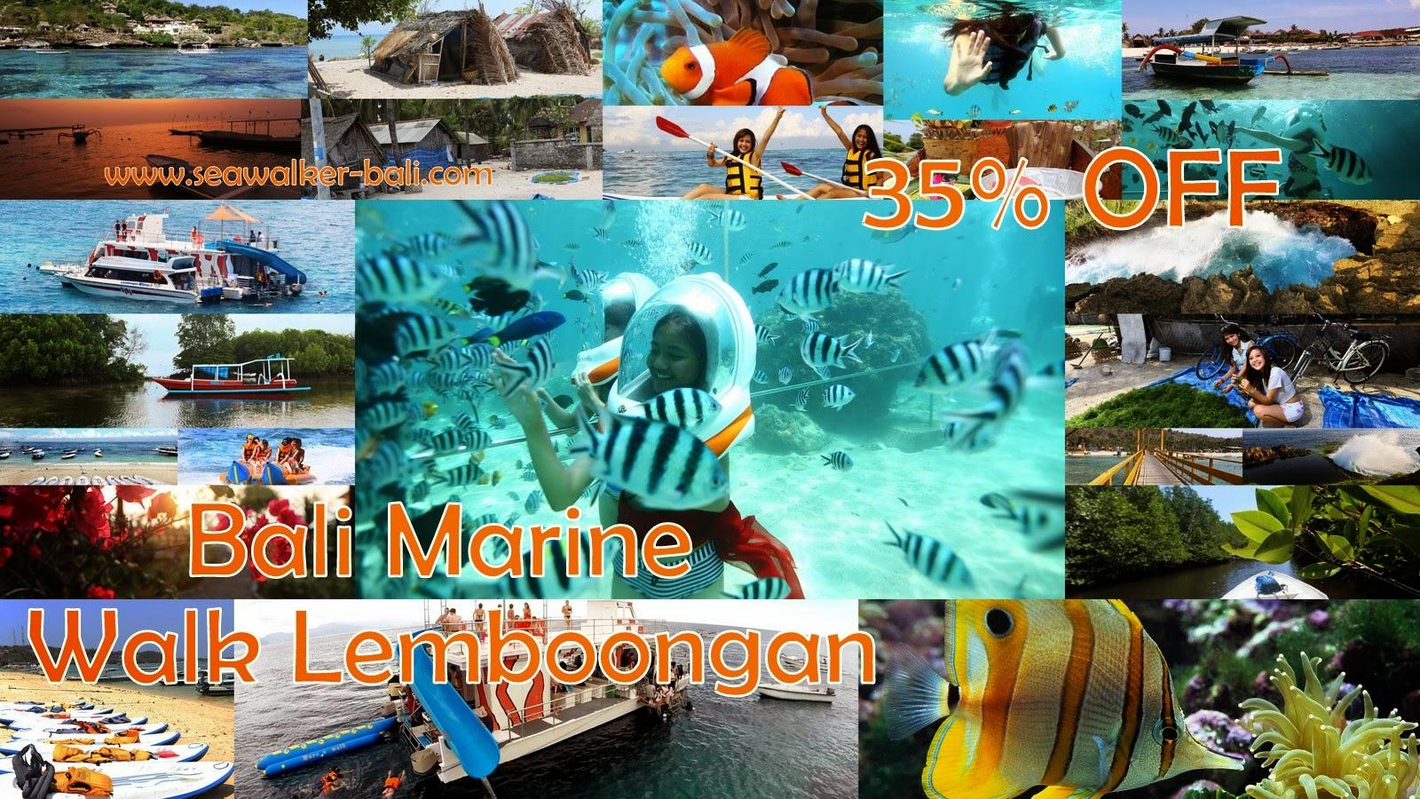 Bali Marine Walk Lembongan Rp 650000 Free Photo Paket Honeymoon Nusa Penida 4 Hari 3 Malam Update 2018
