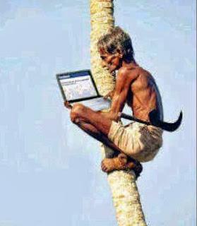 Foto kakek gaul sedang Fb-an di atas pohon kelapa